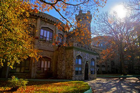 brandeis university top  reasons