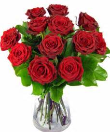 order a true dozen 12 roses delivered