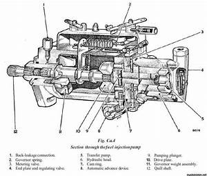 Cav 3 Cylinder Injector Pump Diagram