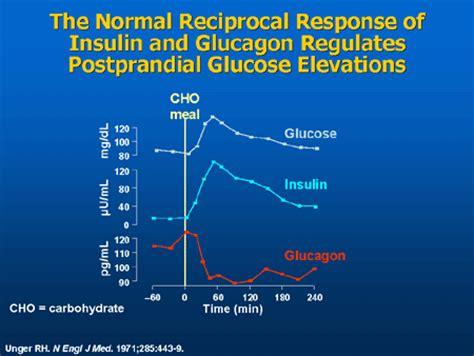 diabetes   gi tract important interrelationships