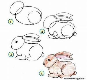 Lapin Facile A Dessiner : coloriage comment dessiner un lapin etape par etape ~ Carolinahurricanesstore.com Idées de Décoration
