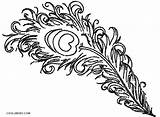 Peacock Coloring Pages Feather Printable Cool2bkids Feathers Bird Children sketch template
