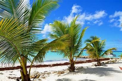 Barbados Beaches Beach Dover