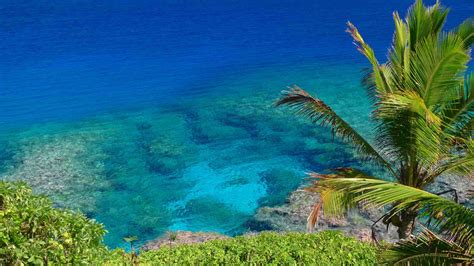 Discover Zika Free South Pacific Islands - Easy Planet Travel