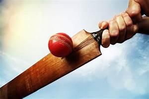 Wallpaper Cricket ball, Cork ball, Cricket bat, HD, 5K ...