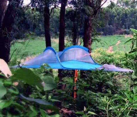 Hammock Tent For Sale by Free Shiping Sale New Product Tree Hammock Tent With