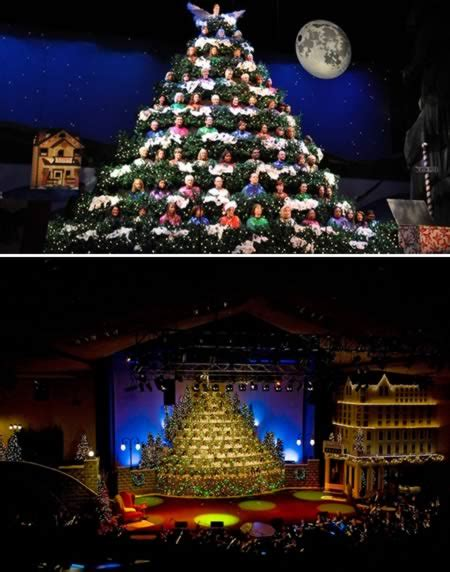 10 most amazing christmas trees from around the globe amazing trees oddee
