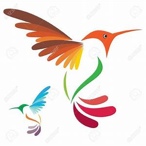 Hummingbird Stock Illustrations  Cliparts And Royalty Free