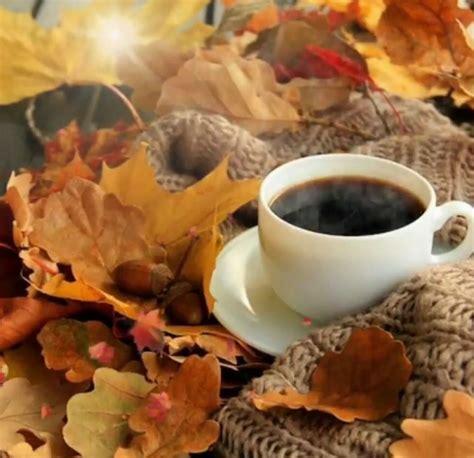Coffee and Fall | Autumn coffee, Autumn leaves, Autumn ...