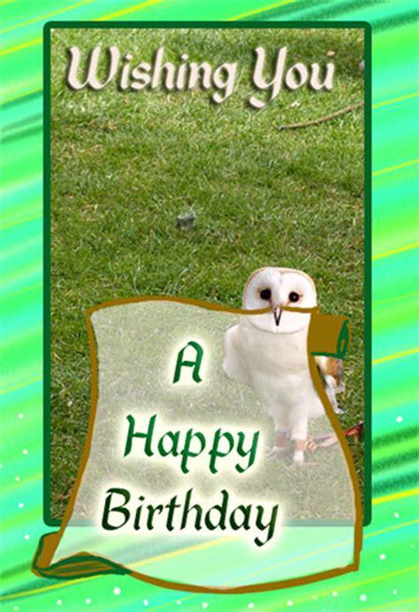 happy birthday owl  birthday wishes ecards