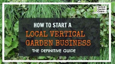 How To Start A Vertical Garden by How To Start A Vertical Garden Business