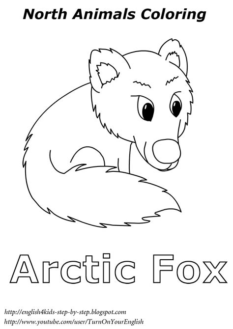 arctic animals song for children 857 | arctic fox coloring