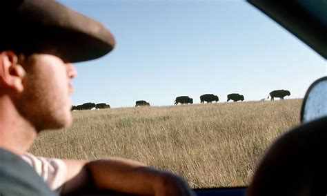 western movies modern westerns