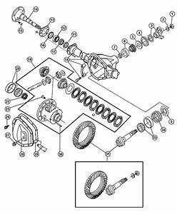 Dodge Dana 60 Front Axle Parts Diagram  Dodge  Free Engine Image For User Manual Download