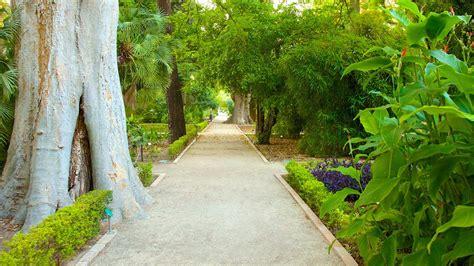 giardino botanico valencia giardino botanico di valencia punti di interesse a