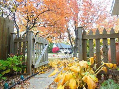 Fall Reminder It Is Time To Flip Your Rain Barrels
