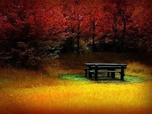 Schöne Herbstbilder Kostenlos : hintergrundbilder herbst kostenlos ~ A.2002-acura-tl-radio.info Haus und Dekorationen
