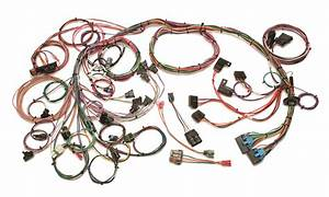Painless Wiring 60202 Gm Tpi Fuel Injection Harness Fits