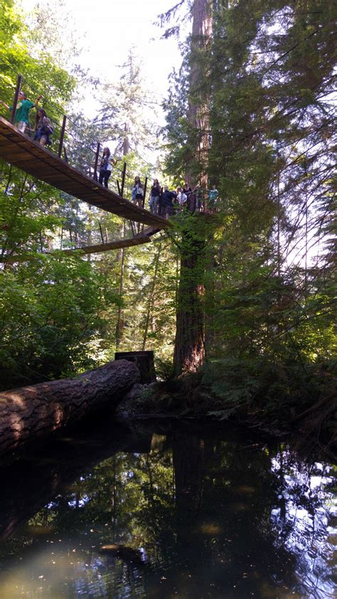Capilano Suspension Bridge : Vancouver Canada | Visions of
