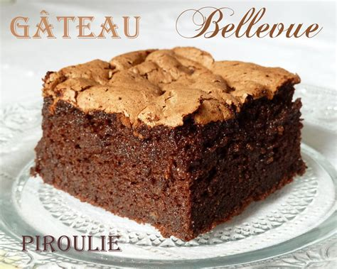 fondant au chocolat mousseux sans beurre sans farine et sans gluten 2 p 226 tisseries et