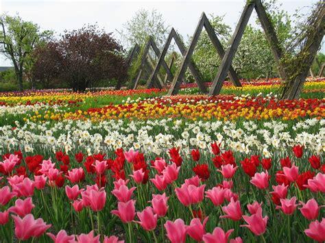 Britzer Garten Events by Green Guide Berlin