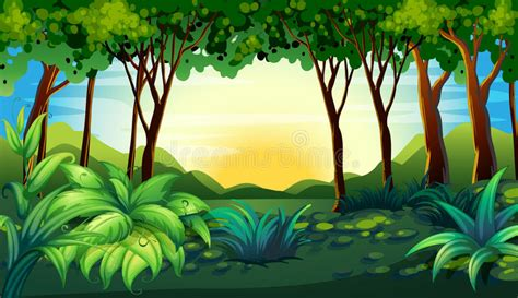 Forest Stock Vector. Illustration Of Jungle, Land, Ground