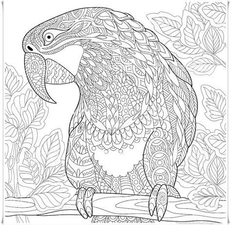 Mandalas Für Experten by Papagei Mandala Ausmalbilder Zum Ausdrucken Parrot Mandala
