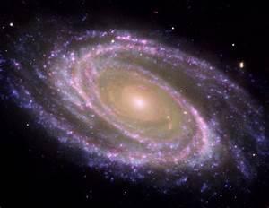 NASA - M81 Galaxy is Pretty in Pink