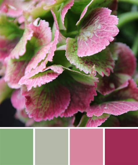 Rosa Und Rot Kombinieren by Farbinspirationen Aus Der Natur Hortensie In Rosa Und Gr 252 N