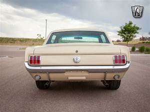 1966 Ford Mustang Sahara Beige for sale on craigslist – Used Cars for Sale