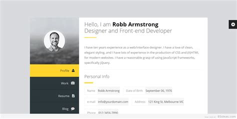 vcard wordpress themes     resume
