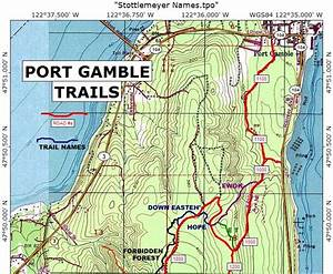 Dan U0026 39 S Blog  Lost In The Port Gamble Forest