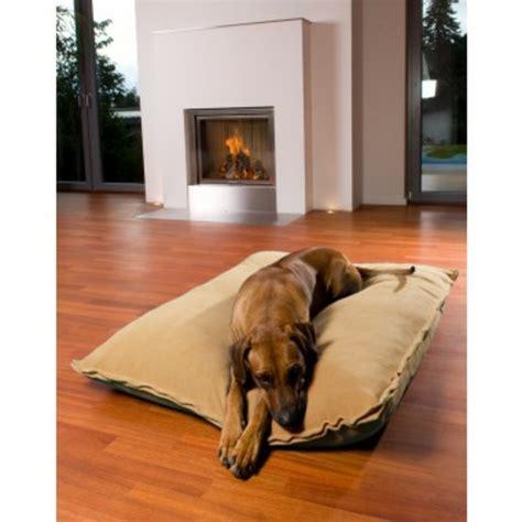 le tapis pour chien grande taille est ici archzine fr
