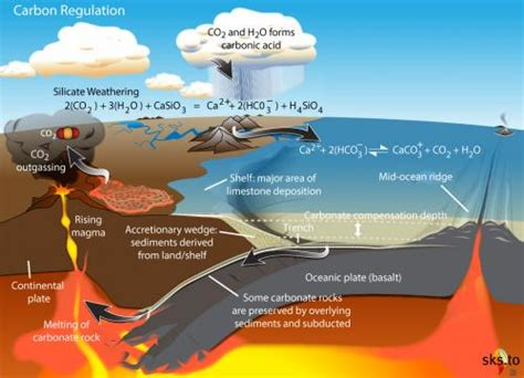 define the term carbon sink rock weathering co2 cycle with annotations