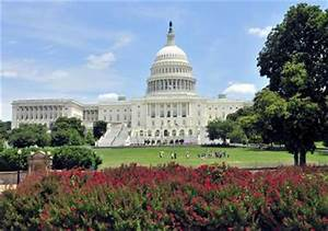 Best Time to Visit Washington, D.C., Weather & Other ...