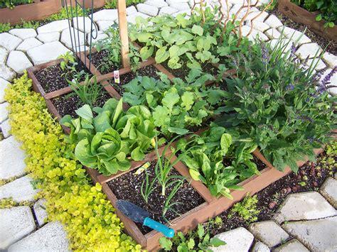 Easy Vegetable Garden