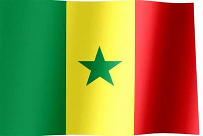 Flag Senegal Waving Animated Flags Yellow