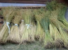 Harvesting Flax Linen