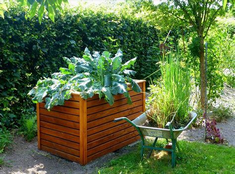 outdoor cooking area raised bed gardens and small plot gardening tips the
