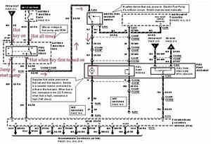 1997 Ford F 150 4x4 Wiring Diagram
