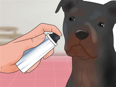 shedding much expert advice on how to reduce excessive shedding in dogs