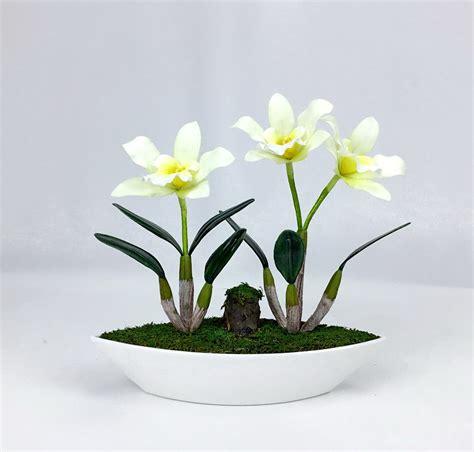 ดอกไม้แต่งบ้าน ดอกกล้วยไม้แคทลียา จัดในกระถางสีขาว สำหรับ ...