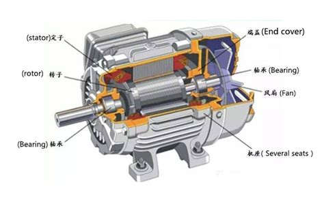 how are squirrel cage induction motors different from slip ring motors