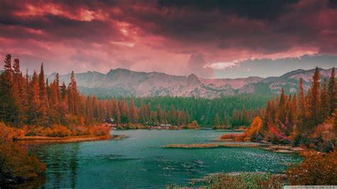 amazing nature background  freejpg