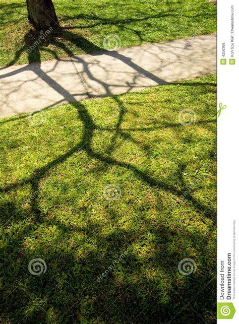shadow  light  play stock image image  mess
