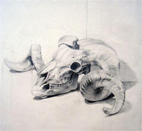 animal skull  dalocska  deviantart skulls  horns