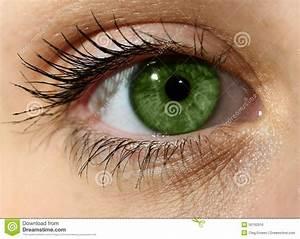 Yeux Verts Rares : fermez vous vers le haut de l 39 oeil vert avec le maquillage ~ Nature-et-papiers.com Idées de Décoration