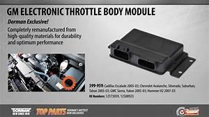 Electronic Throttle Body Module