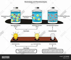 Electrolyte Image  U0026 Photo  Free Trial
