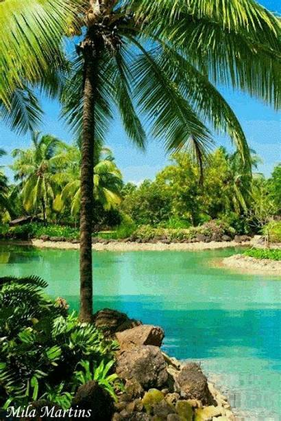 Goa India Places Place Travel Hippies Destinations
